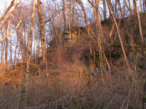 Cliff above Paran Creek.