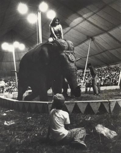 Ring side seat, 1977.