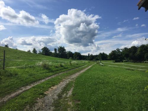 Summer cloud over farm road.